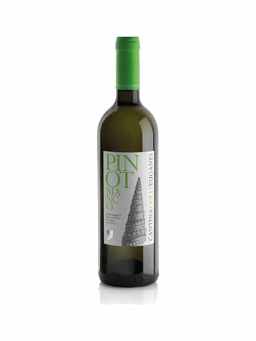 Colli Euganei Pinot Bianco-0